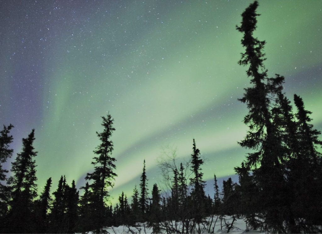 YLLÄS (Laponie finlandaise) : voyage-séminaire @ Hôtel Lapland Ylläs Saaga****