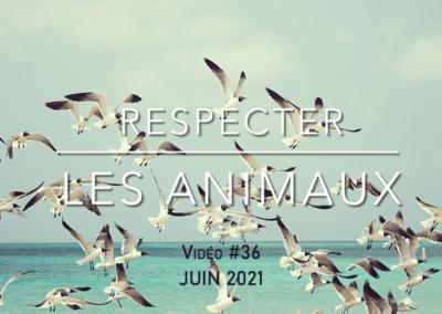 Respecter les animaux (juin 2021)